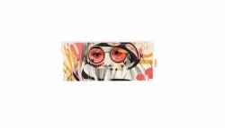 Funda de gafas + paño. Naranjalidad