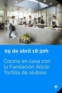 Fundación Alicia 09/04
